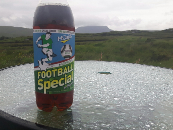 McDaid's Football Special Special Euro 2016 edition at the Happy Camper Cafe, Glenveagh, Donegal