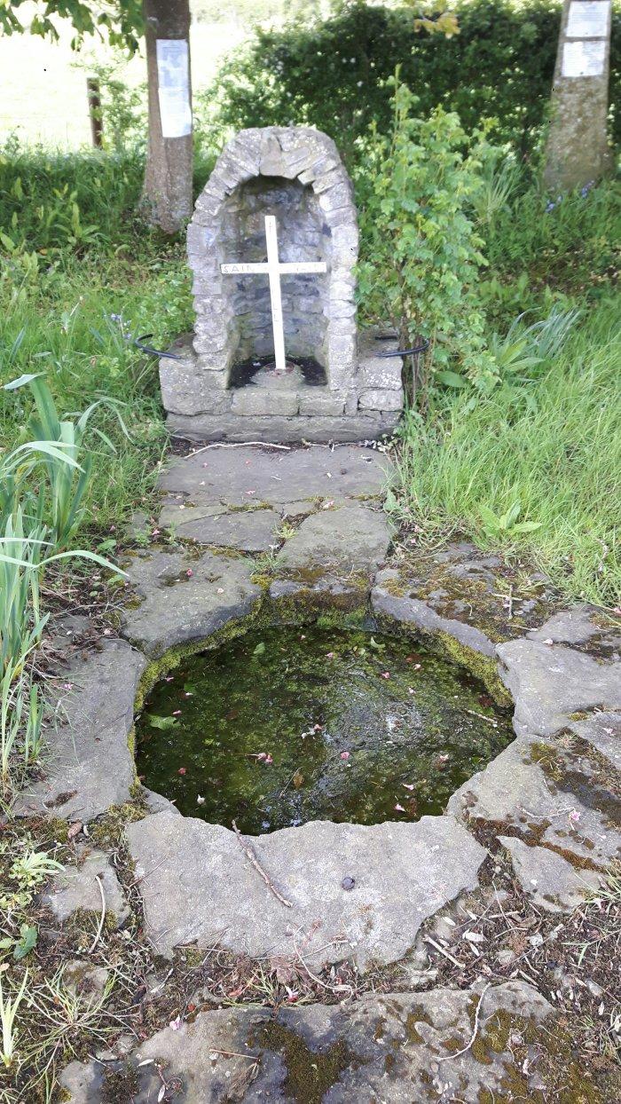 St Leonard's Well, Dunnamaggin,Kilkenny