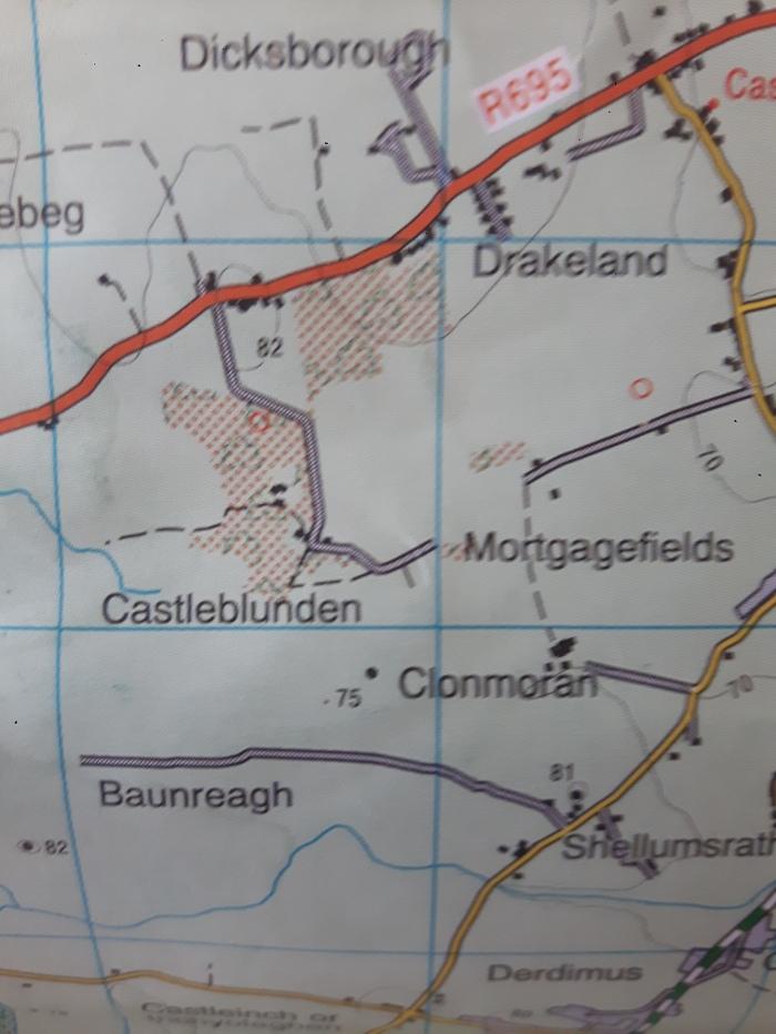 Brittasdryland, Lousybush, Mortgagefields: some Kilkennytownlands