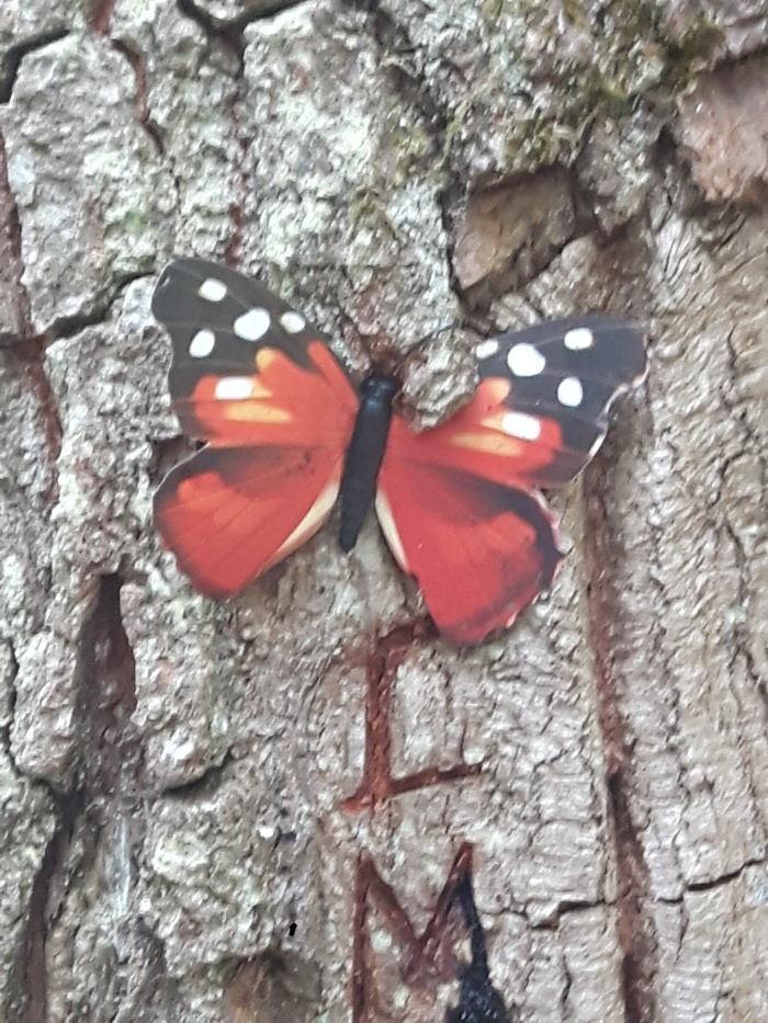A butterfly in the woods: guerrilla forest art in Millennium Forest Kilkenny