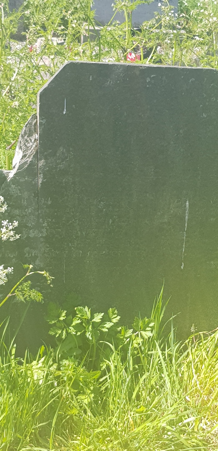 """""""This Woful Elegy"""": the grave of William Costello, """"of the parish of Grangemocler"""""""