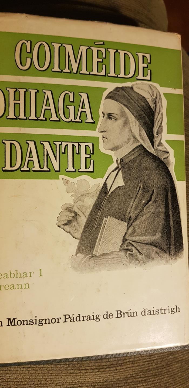 """Sibhse ghabhas tríomsa, cuiridh uaibh gach dóchas"" – Dante's Divine Comedy asGaeilge"