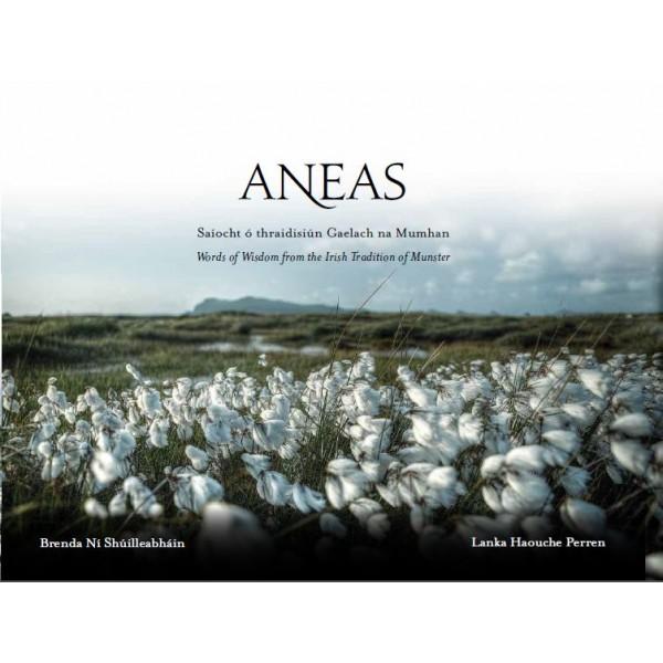Aneas 21.1.14-600x600