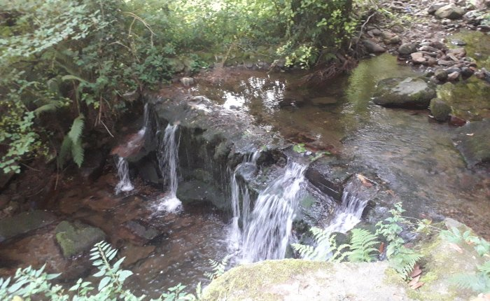 Glen Falls – a poem by Ciaran MacCormaic, Glencomeragh, Co.Waterford
